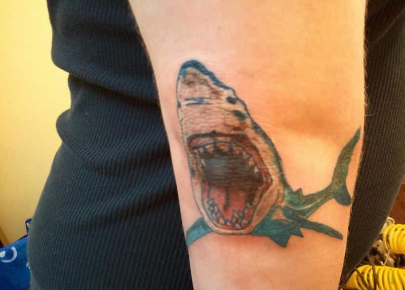 Amazing Fish Tattoo On Elbow
