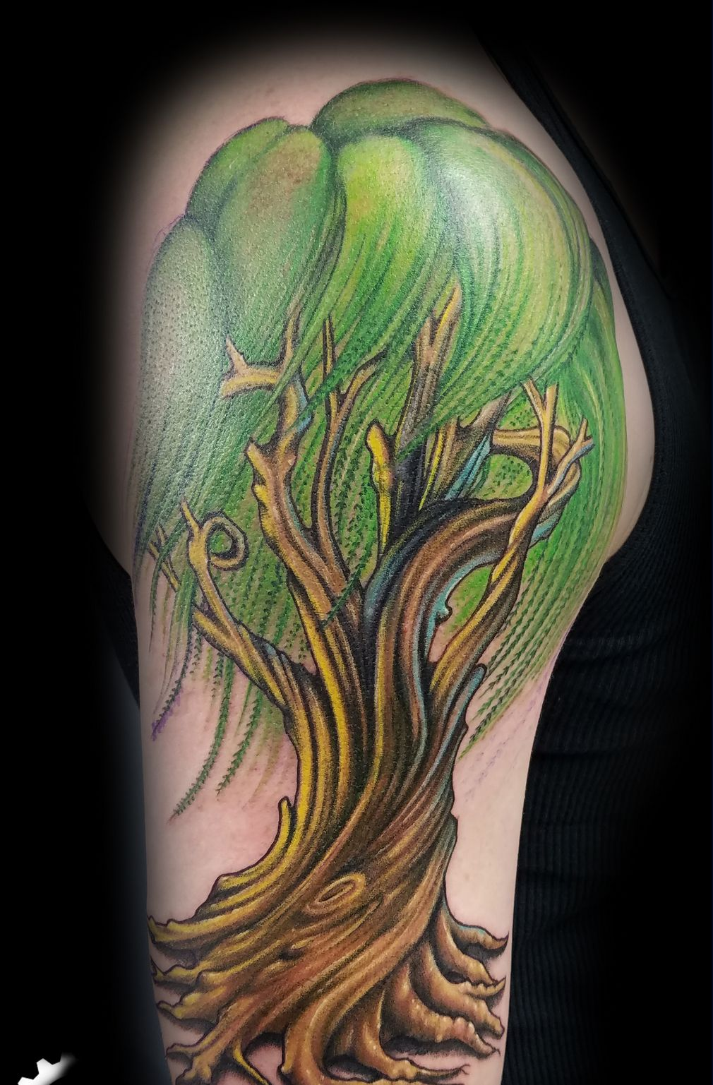 Willow Tree Shoulder Tattoo