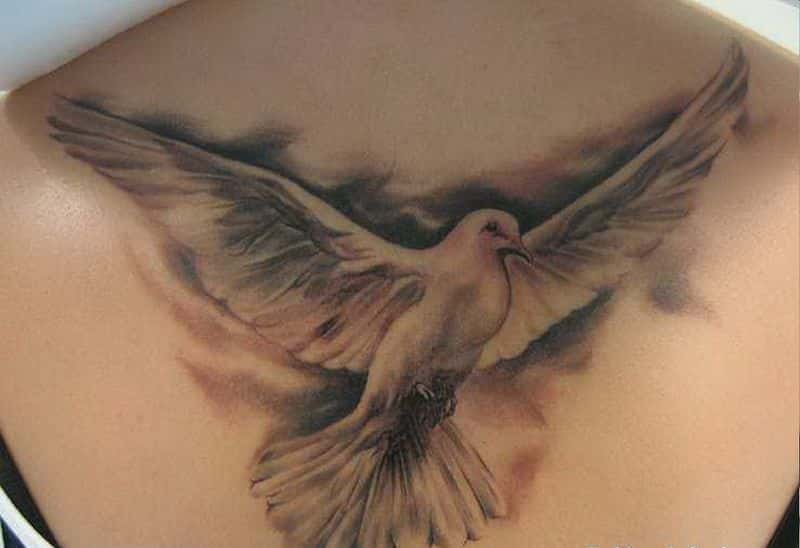 Dove Tattoo Artistsorg Pictures